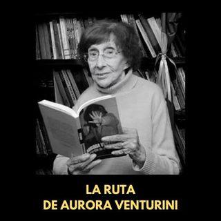 ¿Qué descubrir de Aurora Venturini?