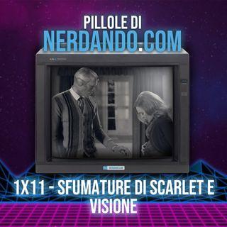 [1x11] Sfumature di Scarlet e Visione