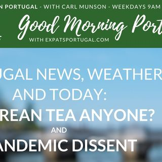 Azorean tea, weekend walnuts & Covid unrest on Good Morning Portugal