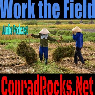 Work the Field