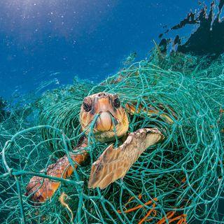 Lotta alla plastica, in Africa le misure più drastiche