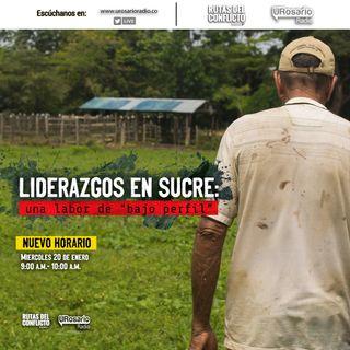 """Liderazgos de Sucre: una labor de """"bajo perfil"""""""