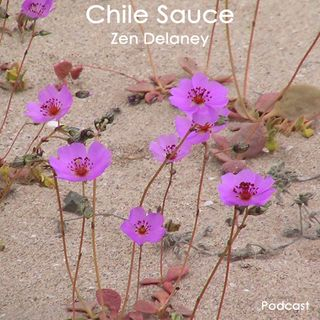 Chile Sauce with Zen Delaney on Lingo Radio  Friday  5 June 2020
