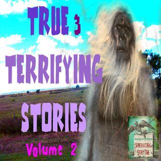 True and Terrifying Stories | Volume 2 | Supernatural StoryTime E140