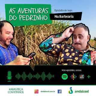 Episodio 3 As aventuras de pedrinho.mp3