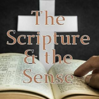 The Scripture & the Sense Podcast #499: Amos 9:7