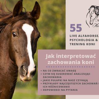 Live 55: Jak interpretować zachowania koni