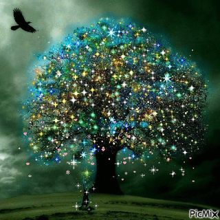 Nov. 28  If A Tree Could Talk ---#2
