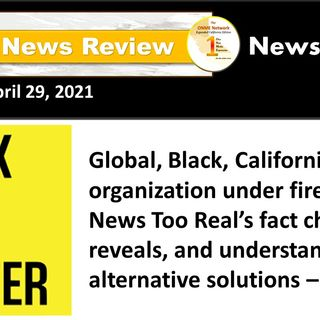 Global, Black, California-based organization, Black Lives Matter, under fire; here are the facts – PART 1