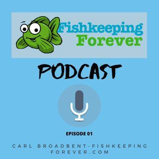Fishkeeping Forever-Podcast