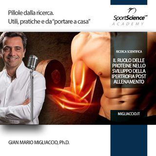 Relazione tra proteine ed ipertrofia