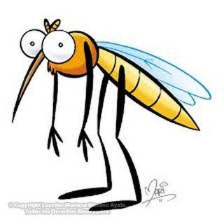 42. Los mosquitos (con extra de mocos)