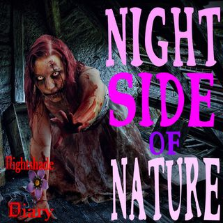 Night Side of Nature | Haunted Houses | Podcast