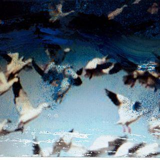 CANTICO Alda Baglioni, Poesie