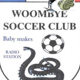 Baby Snakes Talk