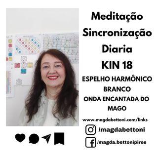 MEDITAÇÃO DE SINCRONIZAÇÃO - KIN 18- Espelho Harmônico Branco