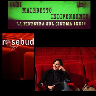 #27 Ogni Maledetto Indipendente - La finestra sul cinema Indie. Sandra Campanini (Cinema Rosebud - Reggio Emilia)