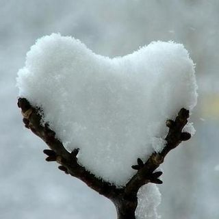 #forlì Cuori sotto la neve-storie di un appuntamento