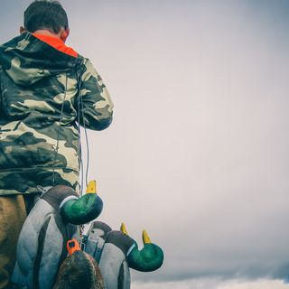 Dean O'Hara, CEO of Field and Game Australia, on changes to Victoria's duck hunting season