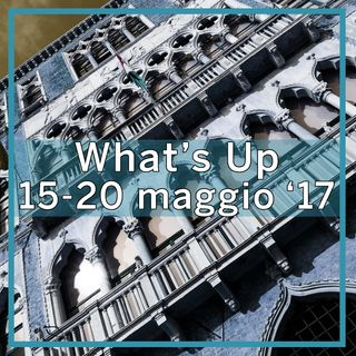 What's Up: 15-20 maggio 2017