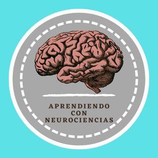 Aprendiendo con Neurociencia