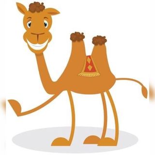 Como Consiguió El Camello La Joroba