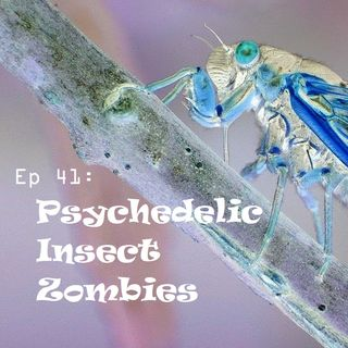Ep 41 - Psychedelic Insect Zombies