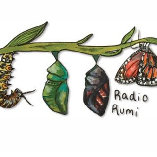Radio Rumi Program 51: There are Thieves in Town (1)