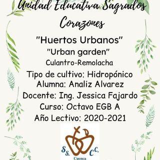 Huertos Urbanos. Analiz Alvarez 8vo EGB A