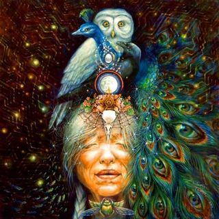 Animali Totem [meditazione e lettura]