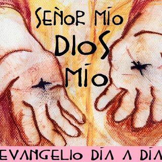 Señor mío y Dios mío - Evangelio del 08/04/2018 - Domingo II de Pascua - Jn 20, 19-31