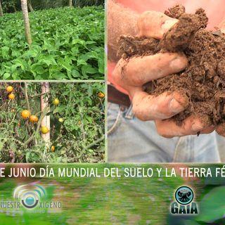 NUESTRO OXÍGENO 22 de junio dia mundial del suelo y la tierra fértil