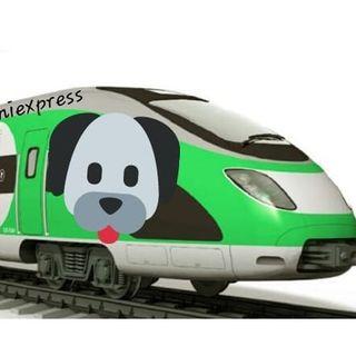 #rast Problemi sulle ferrovie giapponesi