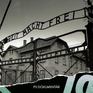 *NY* Skyltstölden i Auschwitz