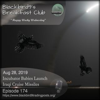 Incubator Babies Launch Iraqi Cruise Missiles - Blackbird9 Podcast