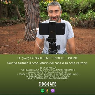 #040 - Le (mie) consulenze cinofile online.