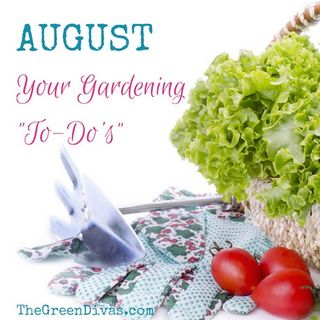 "Gardening ""To-Do"" List for August"
