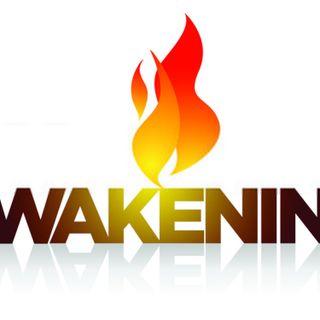 Episode 54: Part 2: The Great Awakening 2020