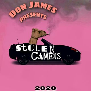 Stolen Camels Prod. Syndrome Type Beats