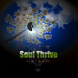 Soul Thrive 7/21/2019