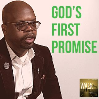 How God's First Promise Can Inspire Your Faith Today- NaRon Tillman