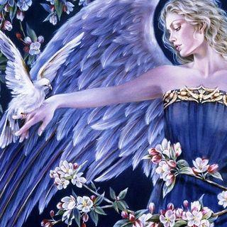 Oroscopo di capodanno Auspicia Angeli