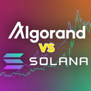 307. Algorand vs Solana | Sentiment Analysis & Price Prediction