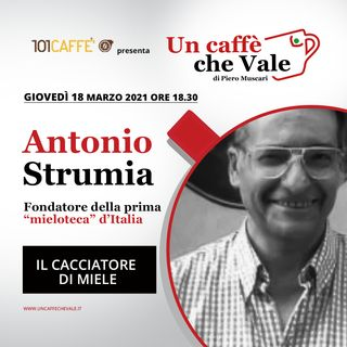 Antonio Strumia: Il cacciatore di miele