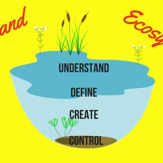 Dal Funnel al Brand Ecosystem