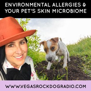 Your Pet's Skin Microbiome And Environmental Allergies