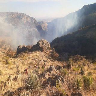 Sofocan incendio en cerro de Aguascalientes
