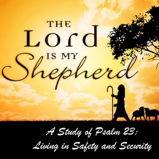THE LORD IS MY SHEPHERD - pt2 - The Shepherd's Care