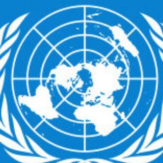 Casaleggio all'ONU è un'operazione commerciale