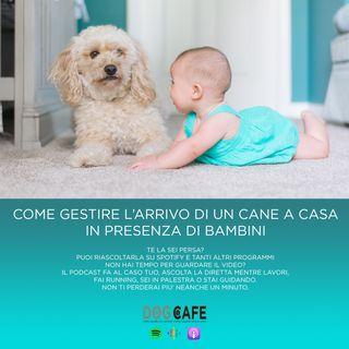 #017 - Come gestire l'arrivo di un cane a casa in presenza di un bambino